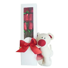 gifts for woman lima, gifts for lovers in Lima, gift shop in Lima, gift shop in Peru, box with roses and stuffed animal, gifts for friends lima, gifts of friendship lima